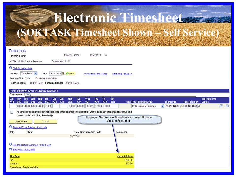 Electronic Timesheet (SOKTASK Timesheet Shown – Self Service)