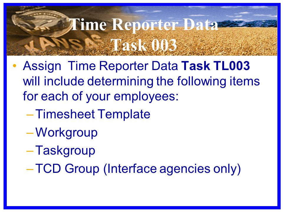 Time Reporter Data Task 003 Assign Time Reporter Data Task TL003 will include determining the following items for each of your employees: –Timesheet Template –Workgroup –Taskgroup –TCD Group (Interface agencies only)