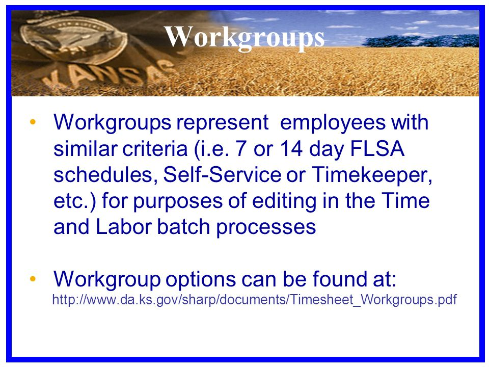 Workgroups Workgroups represent employees with similar criteria (i.e.