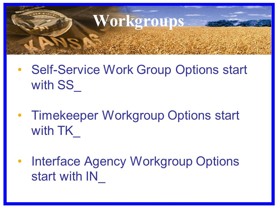 Workgroups Self-Service Work Group Options start with SS_ Timekeeper Workgroup Options start with TK_ Interface Agency Workgroup Options start with IN