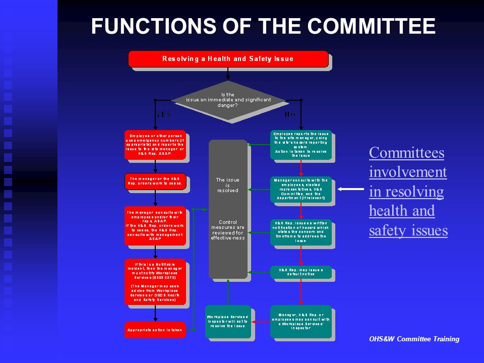 OHS&W Committee Training FUNCTIONS OF THE COMMITTEE Committees involvement in resolving health and safety issues