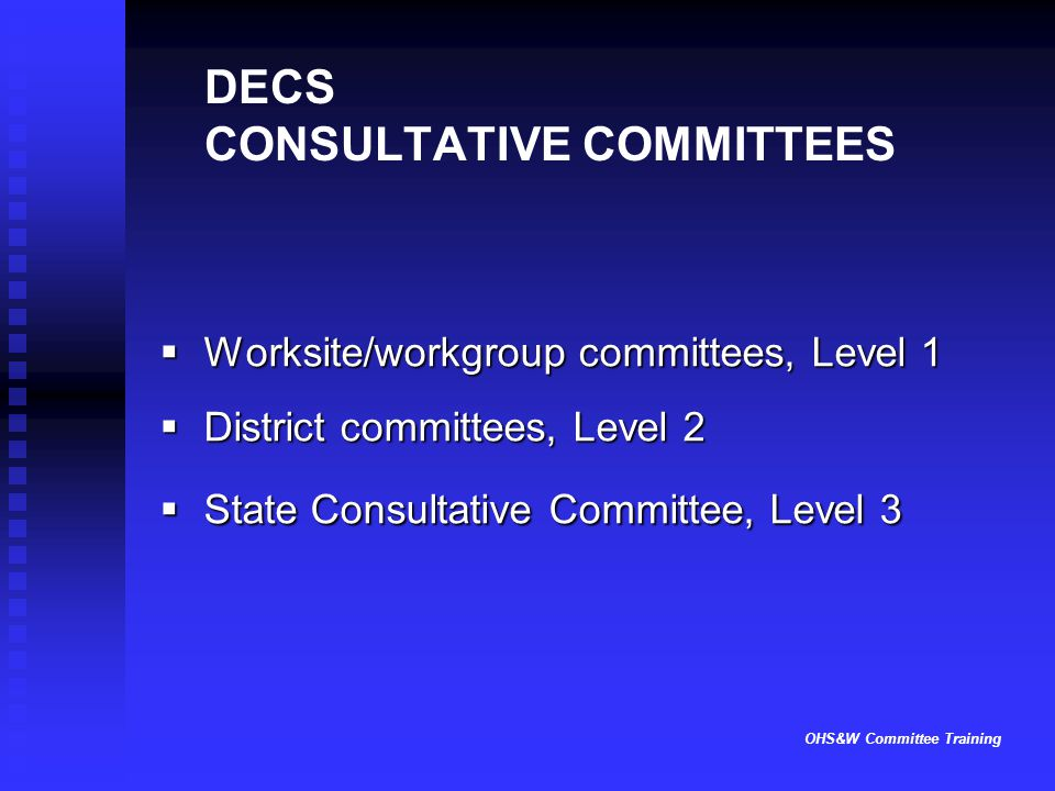 OHS&W Committee Training DECS CONSULTATIVE COMMITTEES  Worksite/workgroup committees, Level 1  District committees, Level 2  State Consultative Com