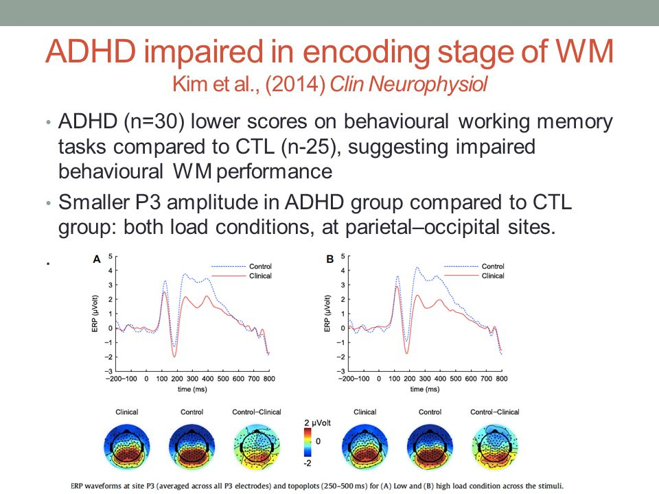 ADHD impaired in encoding stage of WM Kim et al., (2014) Clin Neurophysiol ADHD (n=30) lower scores on behavioural working memory tasks compared to CTL (n-25), suggesting impaired behavioural WM performance Smaller P3 amplitude in ADHD group compared to CTL group: both load conditions, at parietal–occipital sites..