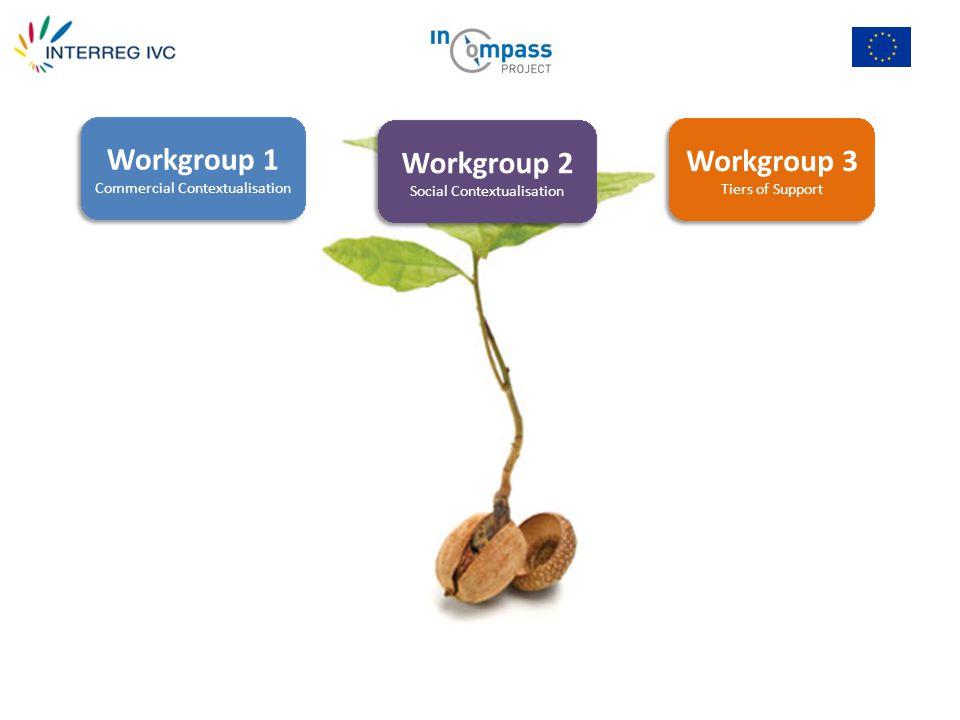 Workgroup 1 Commercial Contextualisation Workgroup 2 Social Contextualisation Workgroup 3 Tiers of Support