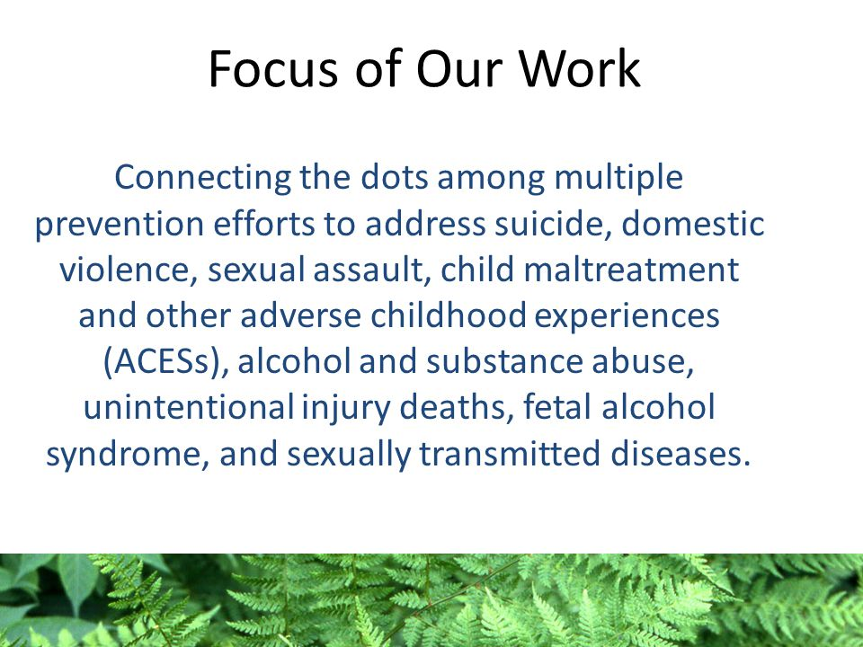 Focus of Our Work Connecting the dots among multiple prevention efforts to address suicide, domestic violence, sexual assault, child maltreatment and