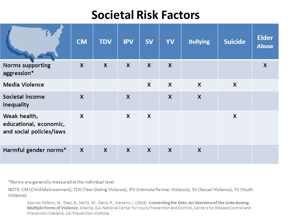 Societal Risk Factors CMTDVIPVSVYV Bullying Suicide Elder Abuse Norms supporting aggression* XXXXXX Media ViolenceXXXX Societal income inequality XXXX