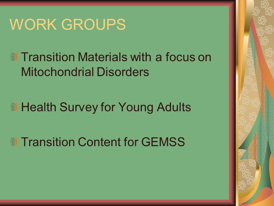 WORK GROUPS Transition Materials with a focus on Mitochondrial Disorders Health Survey for Young Adults Transition Content for GEMSS