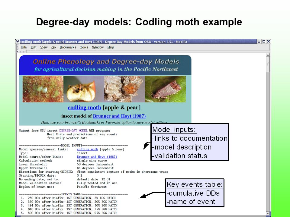 Degree-day models: Codling moth example