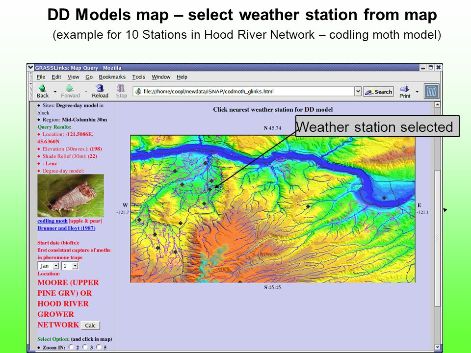 DD Models map – select weather station from map (example for 10 Stations in Hood River Network – codling moth model) Weather station selected