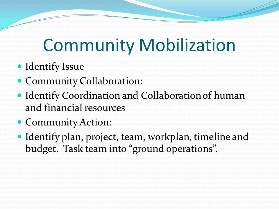 Community Mobilization Identify Issue Community Collaboration: Identify Coordination and Collaboration of human and financial resources Community Action: Identify plan, project, team, workplan, timeline and budget.