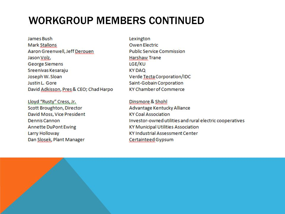 WORKGROUP MEMBERS CONTINUED