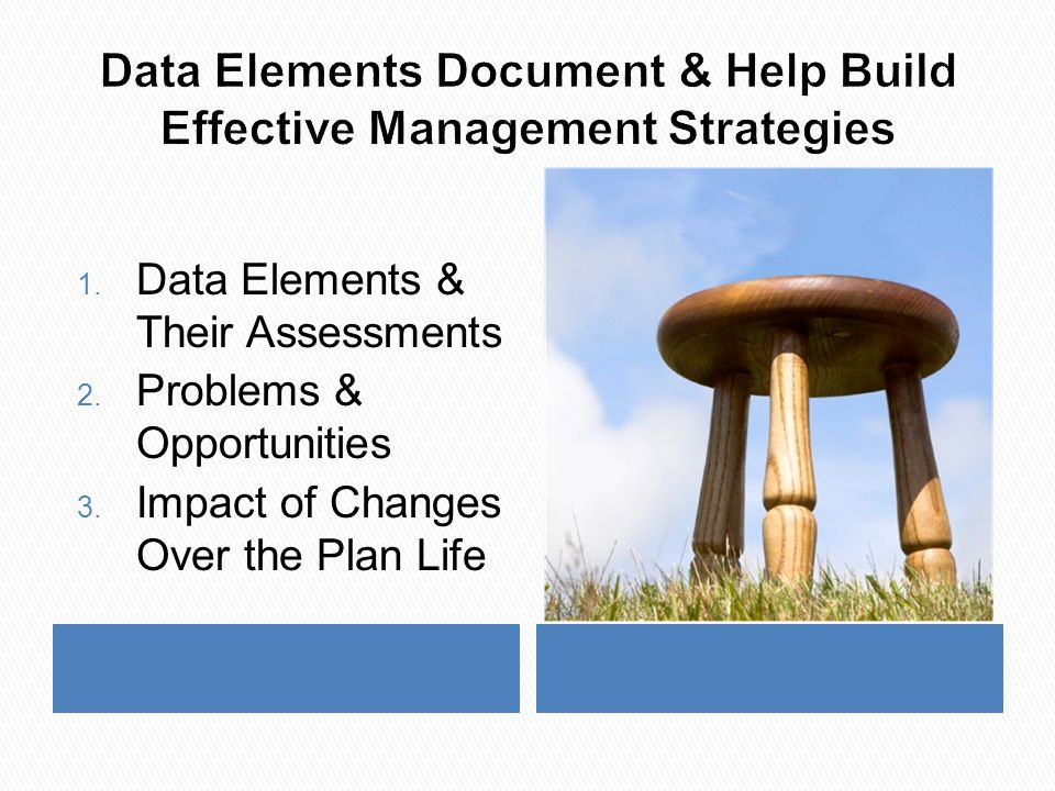 1. Data Elements & Their Assessments 2. Problems & Opportunities 3.