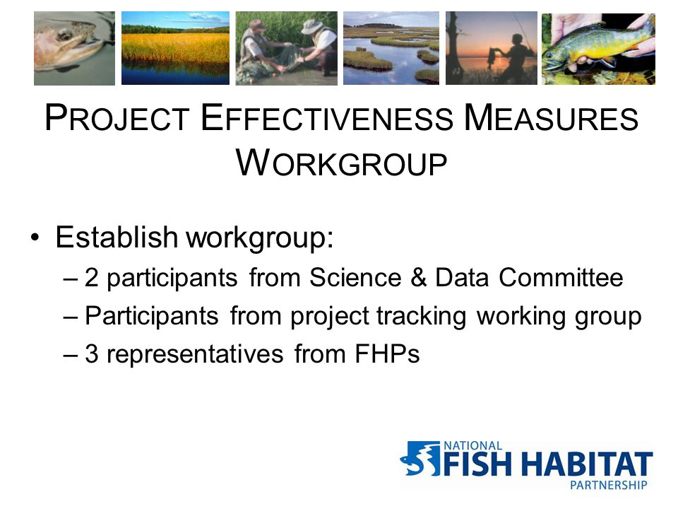 P ROJECT E FFECTIVENESS M EASURES W ORKGROUP Establish workgroup: –2 participants from Science & Data Committee –Participants from project tracking working group –3 representatives from FHPs