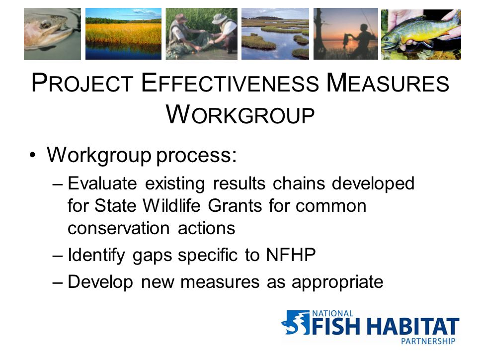 P ROJECT E FFECTIVENESS M EASURES W ORKGROUP Workgroup process: –Evaluate existing results chains developed for State Wildlife Grants for common conse