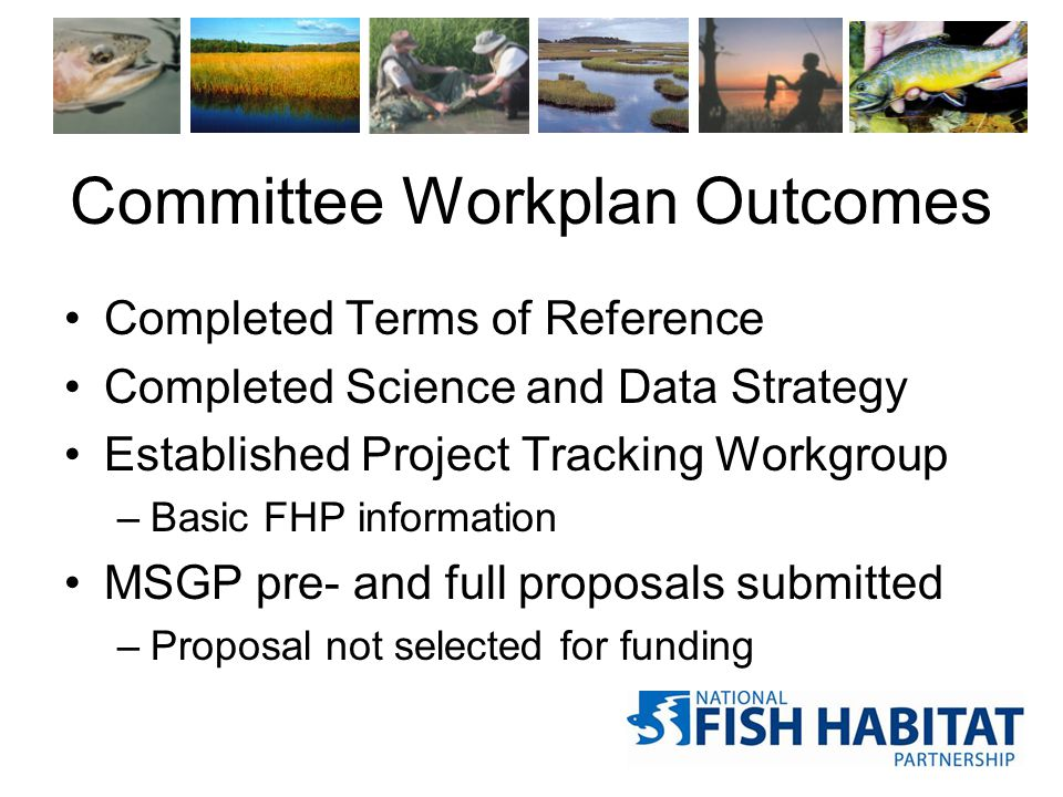 Committee Workplan Outcomes Completed Terms of Reference Completed Science and Data Strategy Established Project Tracking Workgroup –Basic FHP information MSGP pre- and full proposals submitted –Proposal not selected for funding