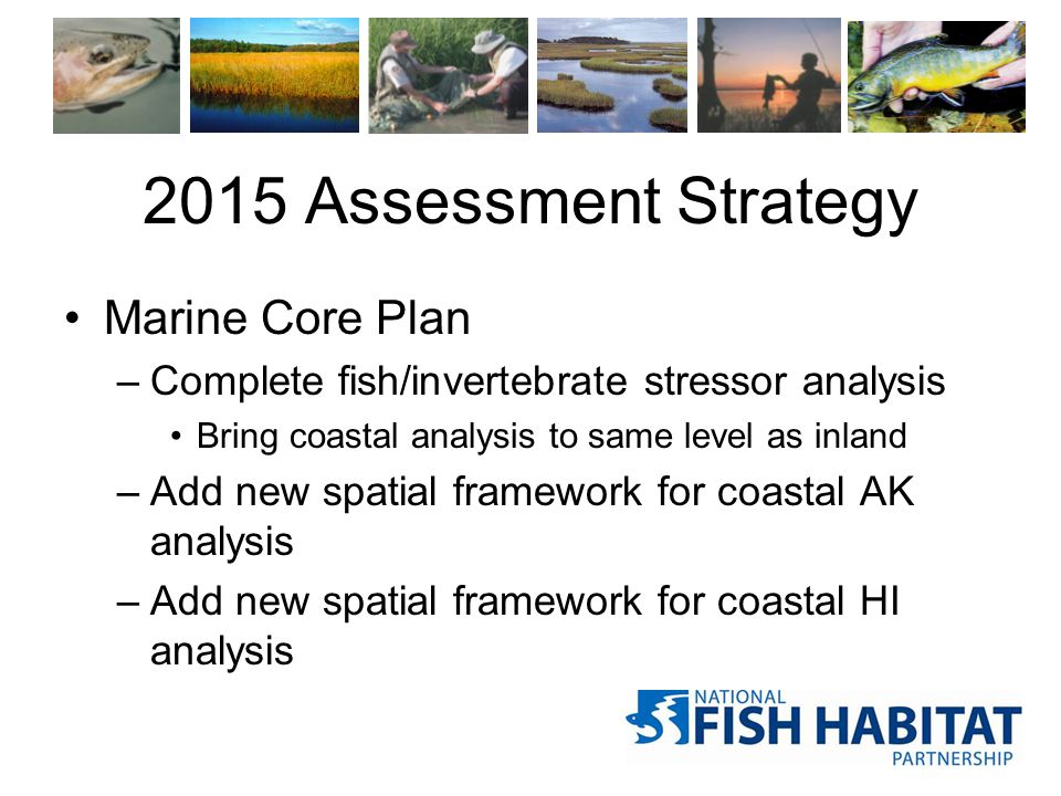 2015 Assessment Strategy Marine Core Plan –Complete fish/invertebrate stressor analysis Bring coastal analysis to same level as inland –Add new spatial framework for coastal AK analysis –Add new spatial framework for coastal HI analysis