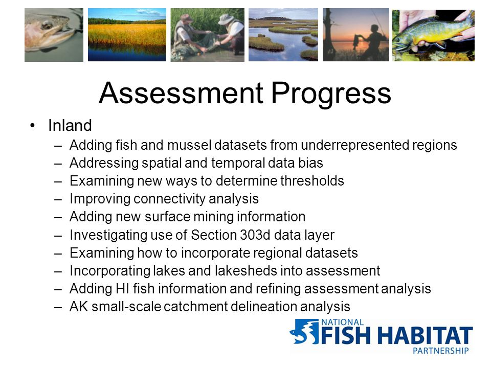 Assessment Progress Inland –Adding fish and mussel datasets from underrepresented regions –Addressing spatial and temporal data bias –Examining new ways to determine thresholds –Improving connectivity analysis –Adding new surface mining information –Investigating use of Section 303d data layer –Examining how to incorporate regional datasets –Incorporating lakes and lakesheds into assessment –Adding HI fish information and refining assessment analysis –AK small-scale catchment delineation analysis