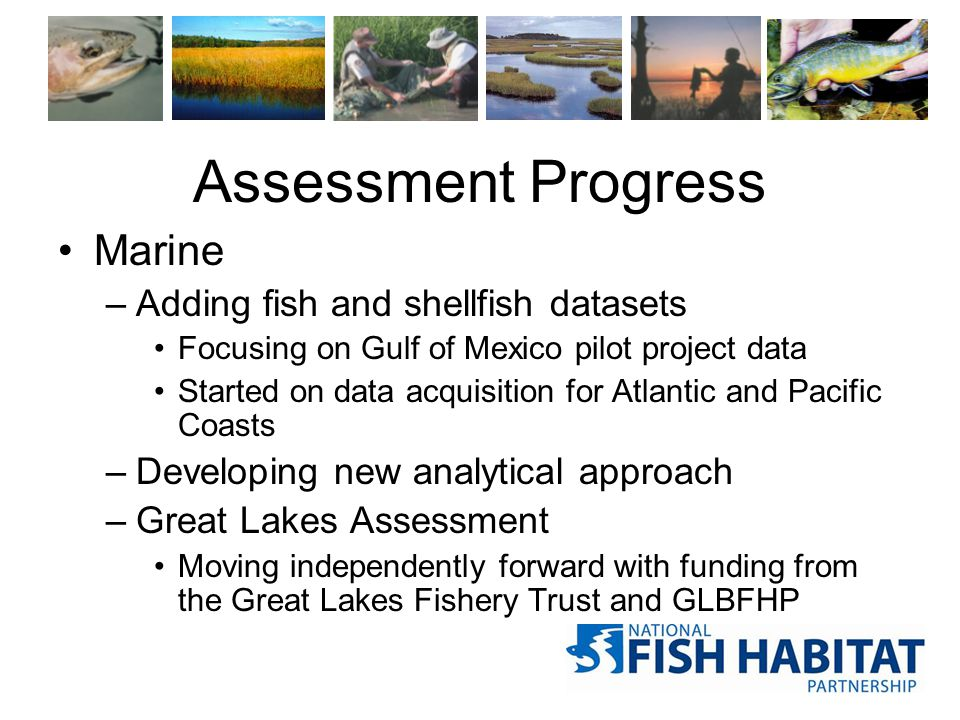 Assessment Progress Marine –Adding fish and shellfish datasets Focusing on Gulf of Mexico pilot project data Started on data acquisition for Atlantic and Pacific Coasts –Developing new analytical approach –Great Lakes Assessment Moving independently forward with funding from the Great Lakes Fishery Trust and GLBFHP