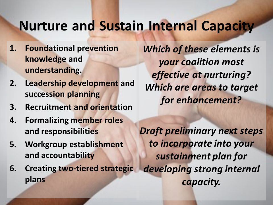 Nurture and Sustain Internal Capacity 1.Foundational prevention knowledge and understanding.