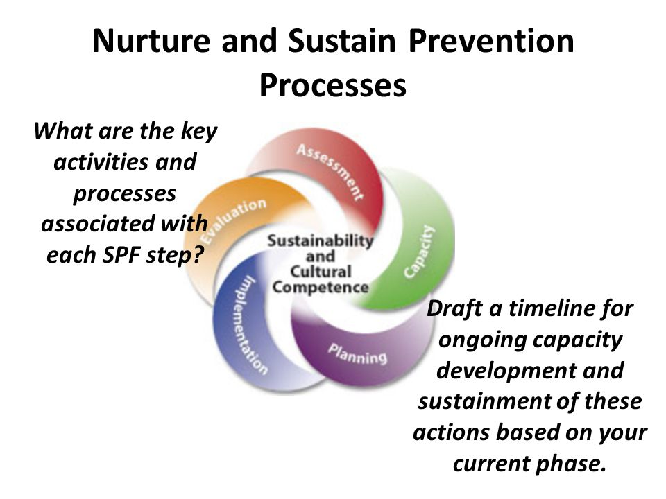 Nurture and Sustain Prevention Processes Draft a timeline for ongoing capacity development and sustainment of these actions based on your current phase.