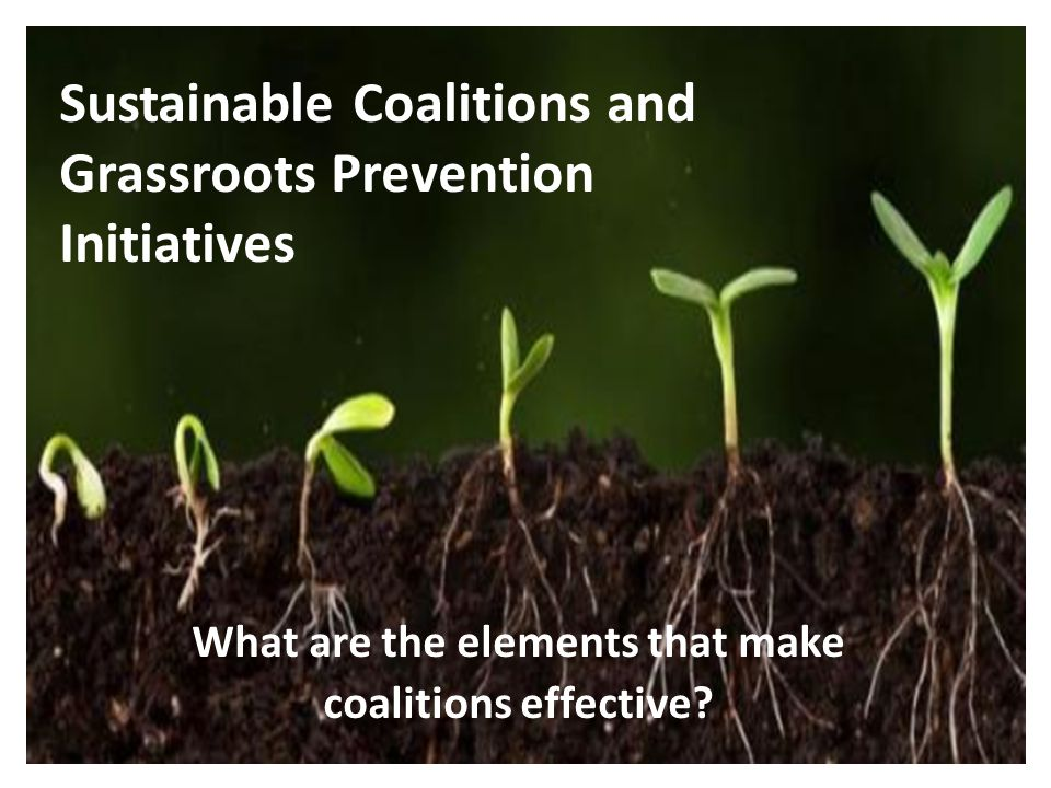 Sustainable Coalitions and Grassroots Prevention Initiatives What are the elements that make coalitions effective