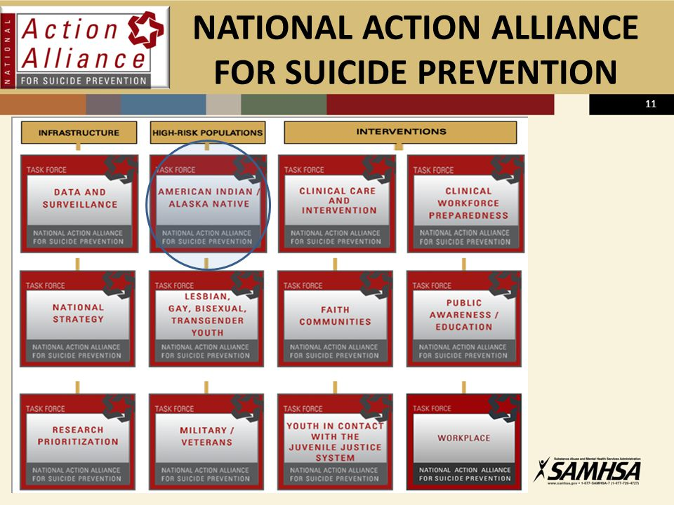NATIONAL ACTION ALLIANCE FOR SUICIDE PREVENTION 11