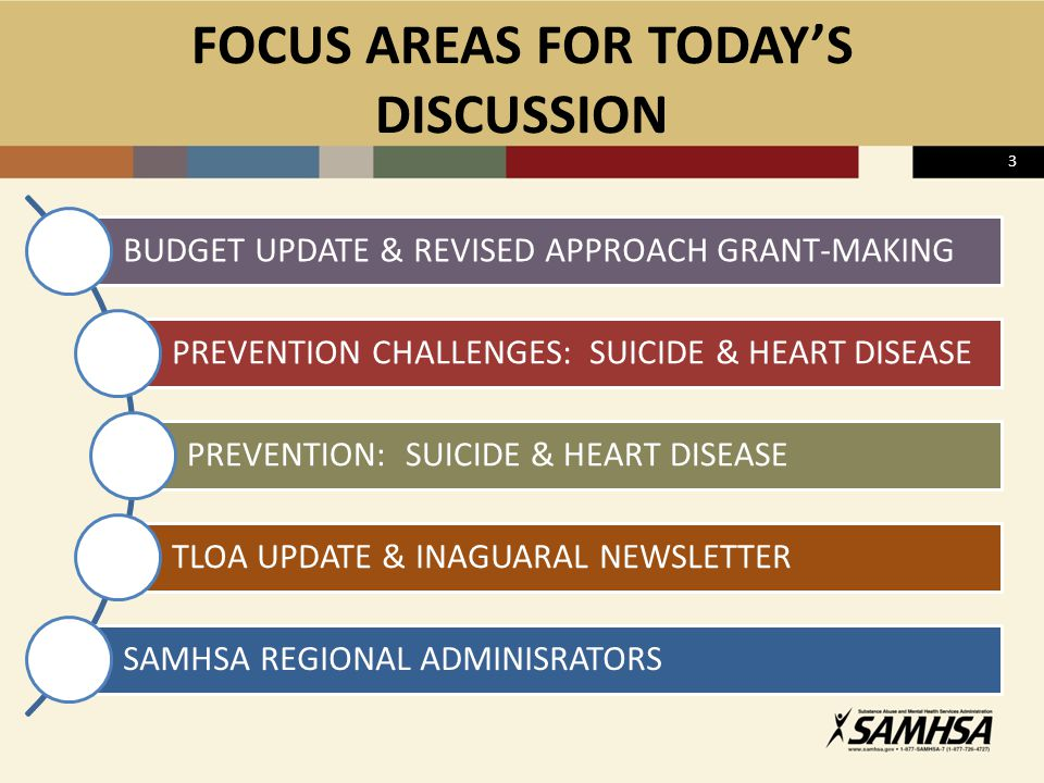 FOCUS AREAS FOR TODAY'S DISCUSSION BUDGET UPDATE & REVISED APPROACH GRANT-MAKING PREVENTION CHALLENGES: SUICIDE & HEART DISEASE PREVENTION: SUICIDE &