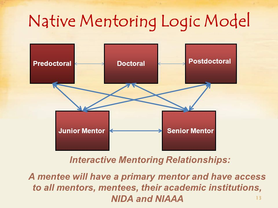 Native Mentoring Logic Model 13 Interactive Mentoring Relationships: A mentee will have a primary mentor and have access to all mentors, mentees, their academic institutions, NIDA and NIAAA Postdoctoral DoctoralPredoctoral Junior Mentor Senior Mentor