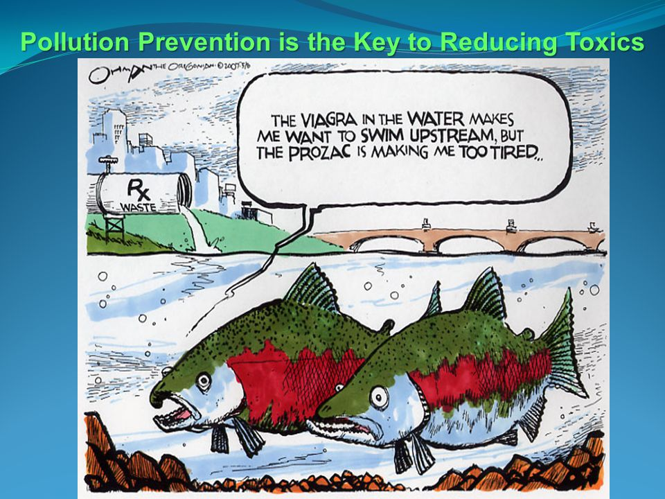 Pollution Prevention is the Key to Reducing Toxics