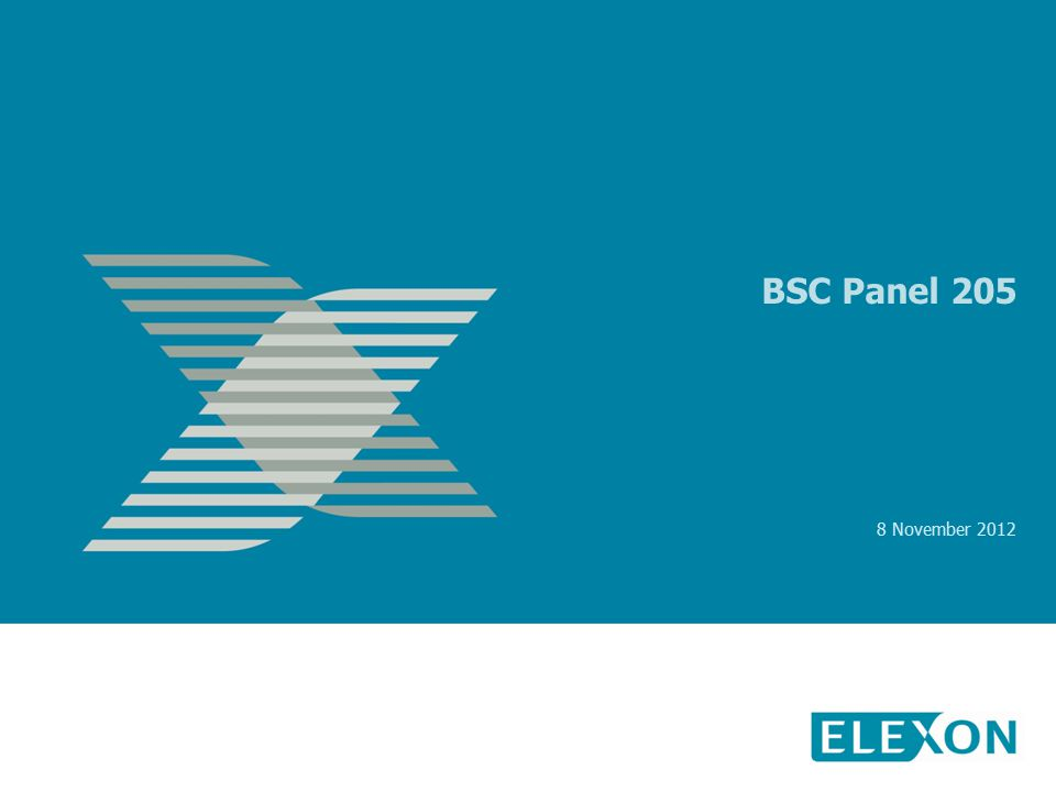 BSC Panel 205 8 November 2012