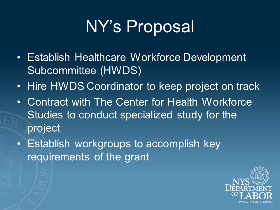 NY's Proposal Establish Healthcare Workforce Development Subcommittee (HWDS) Hire HWDS Coordinator to keep project on track Contract with The Center for Health Workforce Studies to conduct specialized study for the project Establish workgroups to accomplish key requirements of the grant