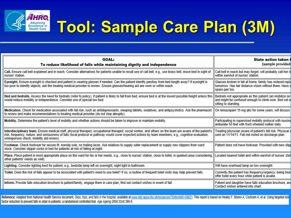 Tool: Sample Care Plan (3M)