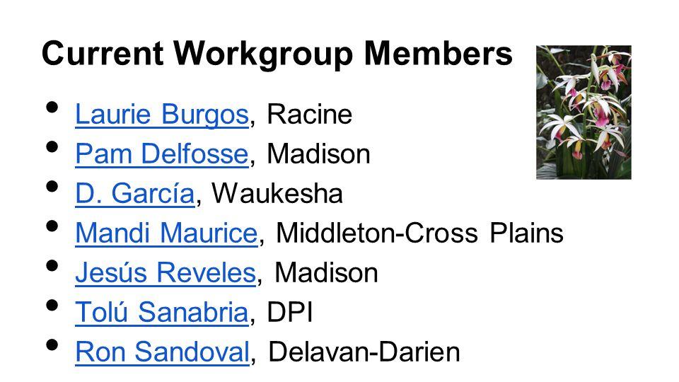 Current Workgroup Members Laurie Burgos, Racine Laurie Burgos Pam Delfosse, Madison Pam Delfosse D. García, Waukesha D. García Mandi Maurice, Middleto