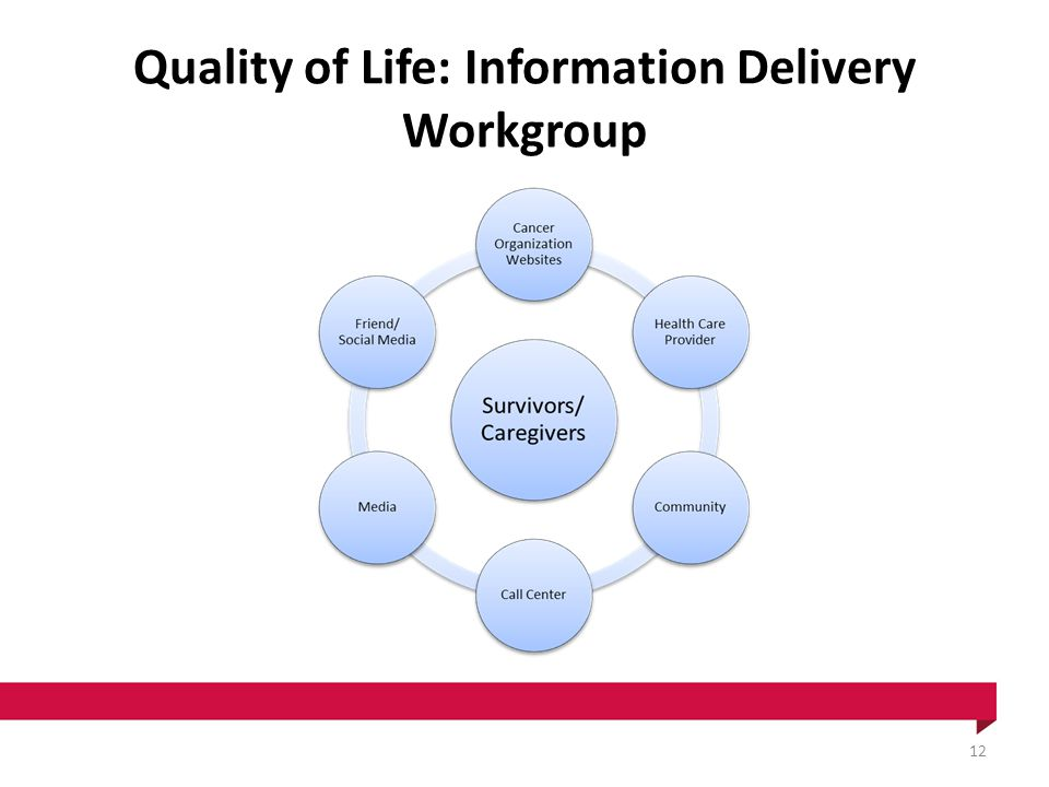 Quality of Life: Information Delivery Workgroup 12