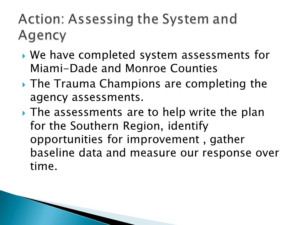  We have completed system assessments for Miami-Dade and Monroe Counties  The Trauma Champions are completing the agency assessments.