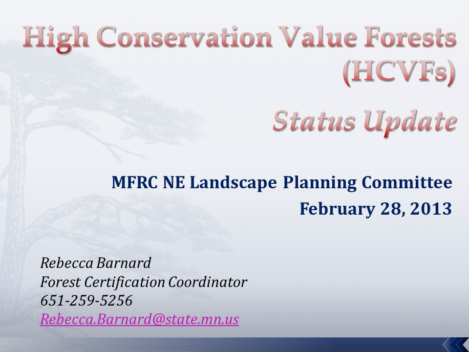 MFRC NE Landscape Planning Committee February 28, 2013 Rebecca Barnard Forest Certification Coordinator 651-259-5256 Rebecca.Barnard@state.mn.us