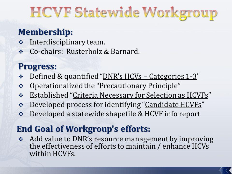 "Membership:  Interdisciplinary team.  Co-chairs: Rusterholz & Barnard.Progress:  Defined & quantified ""DNR's HCVs – Categories 1-3""  Operationaliz"