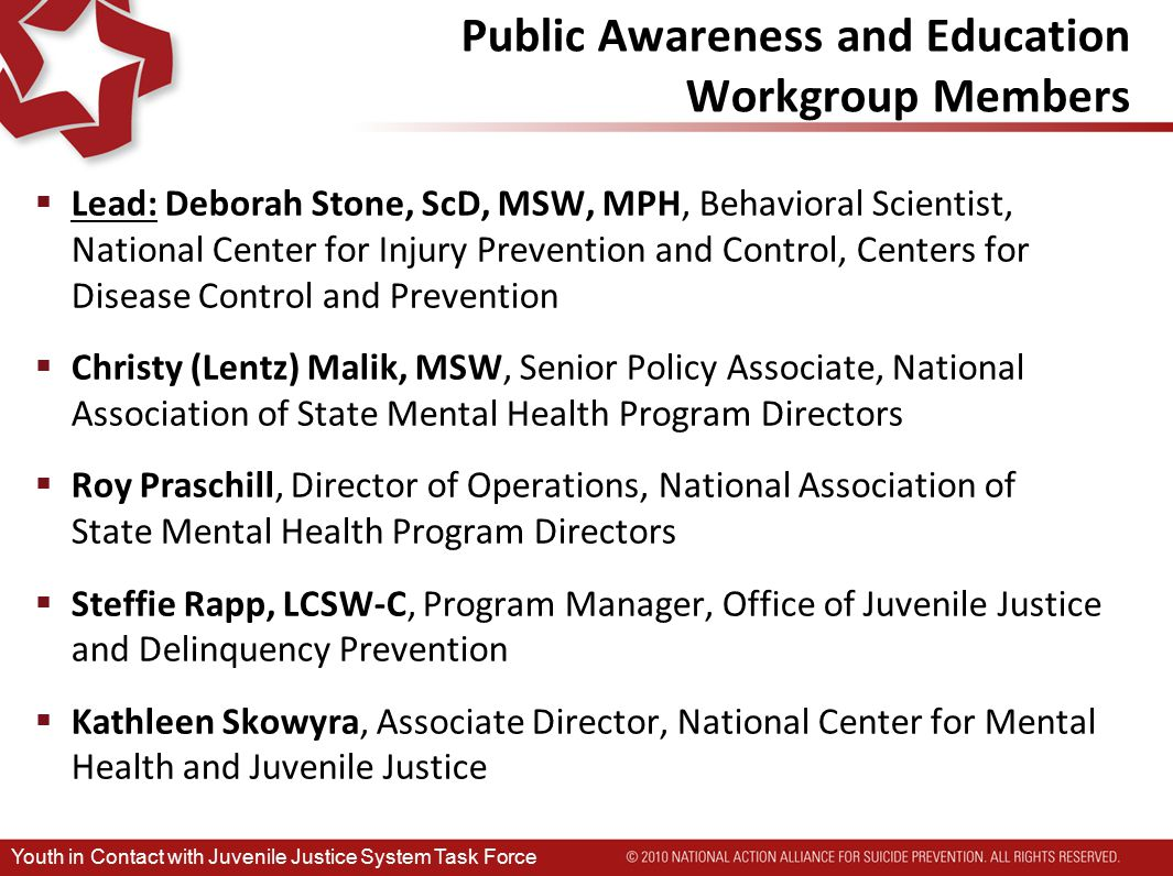 Public Awareness and Education Workgroup Members  Lead: Deborah Stone, ScD, MSW, MPH, Behavioral Scientist, National Center for Injury Prevention and Control, Centers for Disease Control and Prevention  Christy (Lentz) Malik, MSW, Senior Policy Associate, National Association of State Mental Health Program Directors  Roy Praschill, Director of Operations, National Association of State Mental Health Program Directors  Steffie Rapp, LCSW-C, Program Manager, Office of Juvenile Justice and Delinquency Prevention  Kathleen Skowyra, Associate Director, National Center for Mental Health and Juvenile Justice Youth in Contact with Juvenile Justice System Task Force