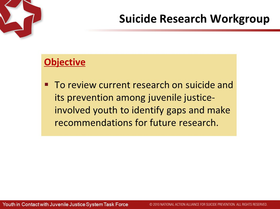 Suicide Research Workgroup Objective  To review current research on suicide and its prevention among juvenile justice- involved youth to identify gaps and make recommendations for future research.