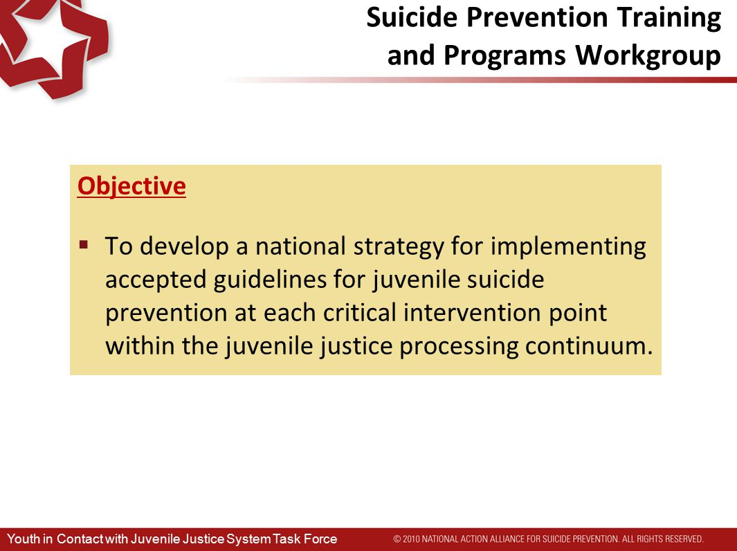 Suicide Prevention Training and Programs Workgroup Objective  To develop a national strategy for implementing accepted guidelines for juvenile suicide prevention at each critical intervention point within the juvenile justice processing continuum.