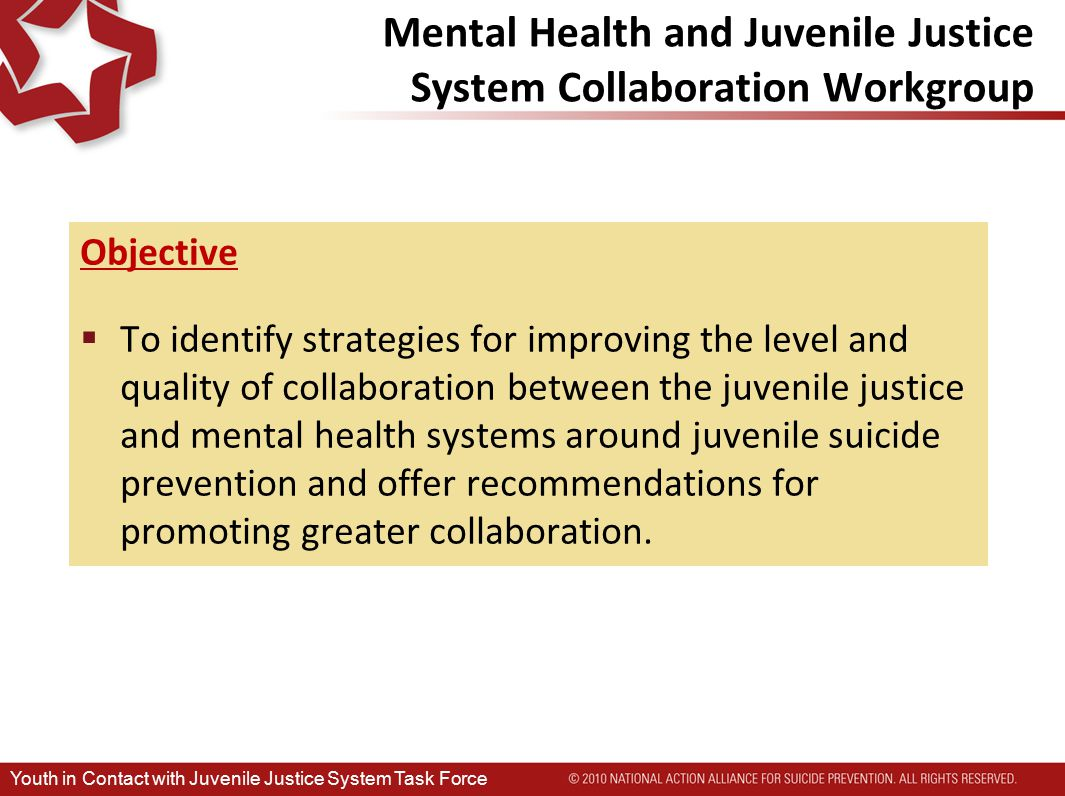 Mental Health and Juvenile Justice System Collaboration Workgroup Objective  To identify strategies for improving the level and quality of collaboration between the juvenile justice and mental health systems around juvenile suicide prevention and offer recommendations for promoting greater collaboration.