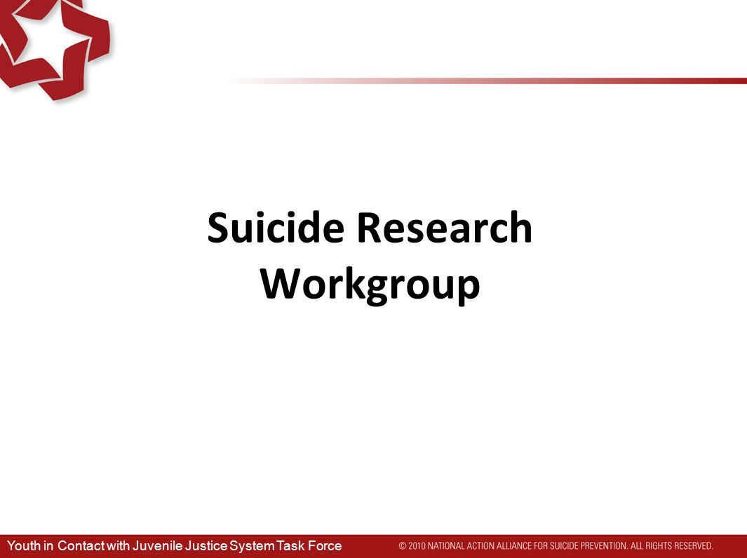 Suicide Research Workgroup Youth in Contact with Juvenile Justice System Task Force