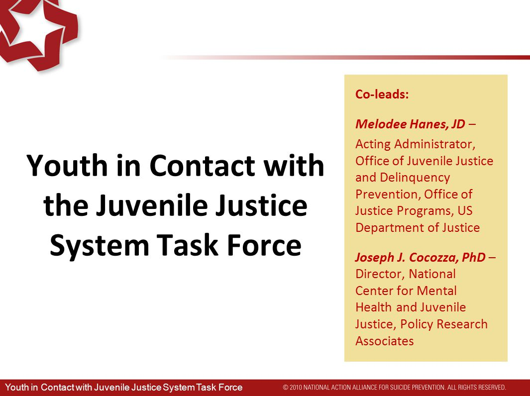 Goals 1)Estimate prevalence of recent and past suicidal ideation and attempts 2)Examine gender and racial/ethnic differences 3)Identify associated risk factors 4)Suggest future directions for research Youth in Contact with Juvenile Justice System Task Force