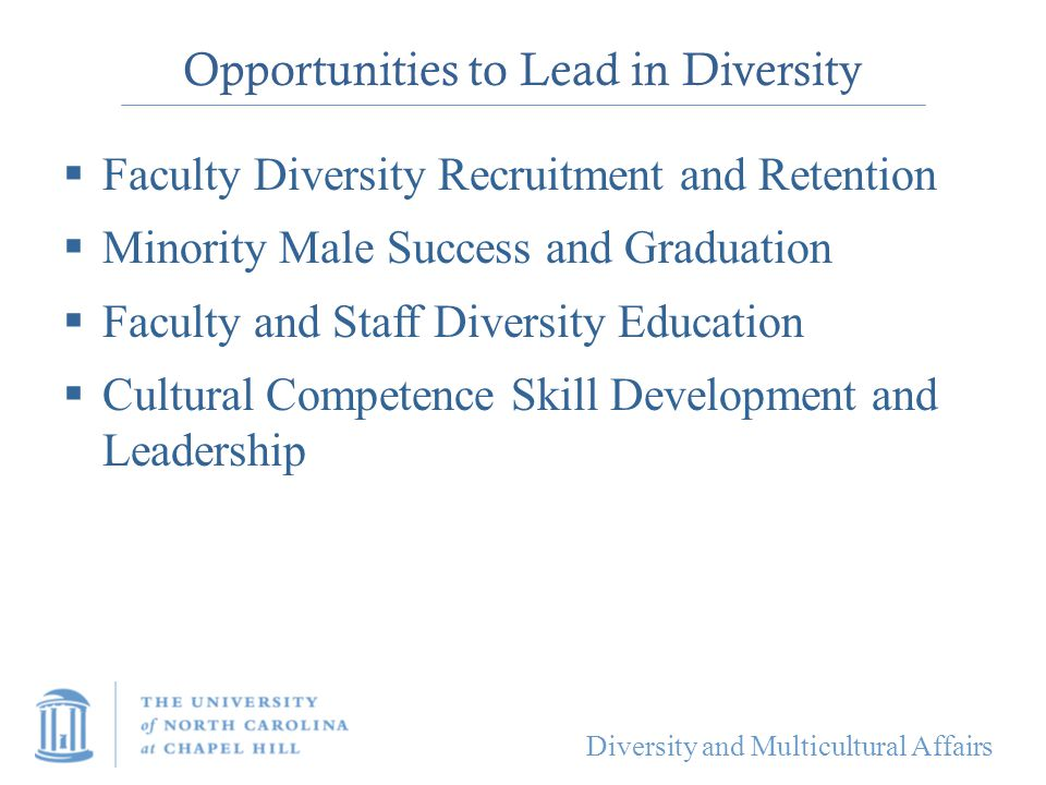 Diversity and Multicultural Affairs Opportunities to Lead in Diversity  Faculty Diversity Recruitment and Retention  Minority Male Success and Gradu