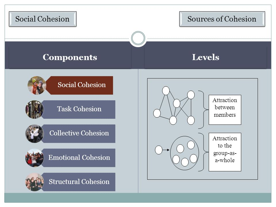 The Nature of Cohesion Developing Cohesion Consequences of Cohesion Satisfaction and adjustment Dynamics and influence Productivity Explaining Initiations Most people, if asked to choose between two groups—one that is cohesive and another that is not—would likely pick the cohesive group.