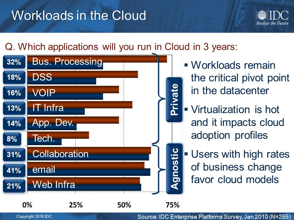 Copyright 2010 IDC. Workloads in the Cloud Q.