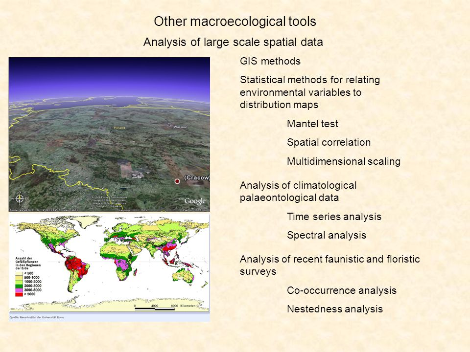 Today's reading What is macroecology?: http://www.macroecology.orghttp://www.macroecology.org Meta-analysis: http://en.wikipedia.org/wiki/Meta-analysishttp://en.wikipedia.org/wiki/Meta-analysis http://wilderdom.com/research/meta-analysis.html Alexander v.