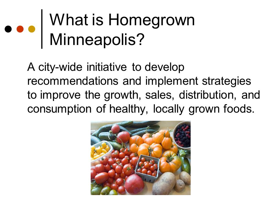 What is Homegrown Minneapolis? A city-wide initiative to develop recommendations and implement strategies to improve the growth, sales, distribution,