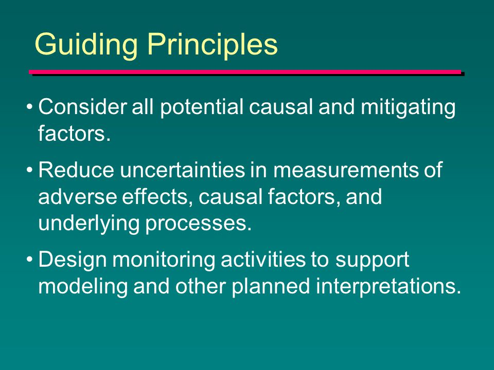 Guiding Principles Consider all potential causal and mitigating factors.
