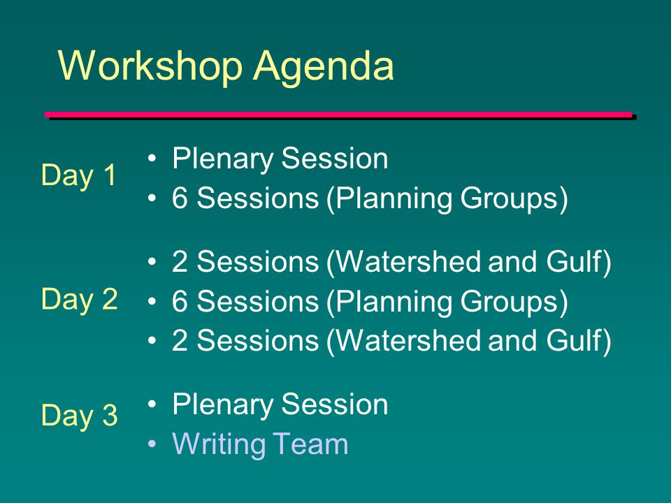 Workshop Agenda Plenary Session 6 Sessions (Planning Groups) 2 Sessions (Watershed and Gulf) 6 Sessions (Planning Groups) 2 Sessions (Watershed and Gulf) Plenary Session Writing Team Day 1 Day 2 Day 3